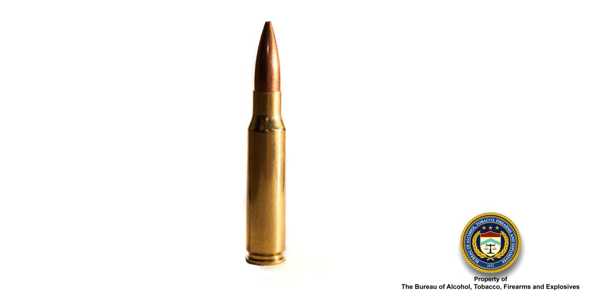 Picture of .308 (rifle)