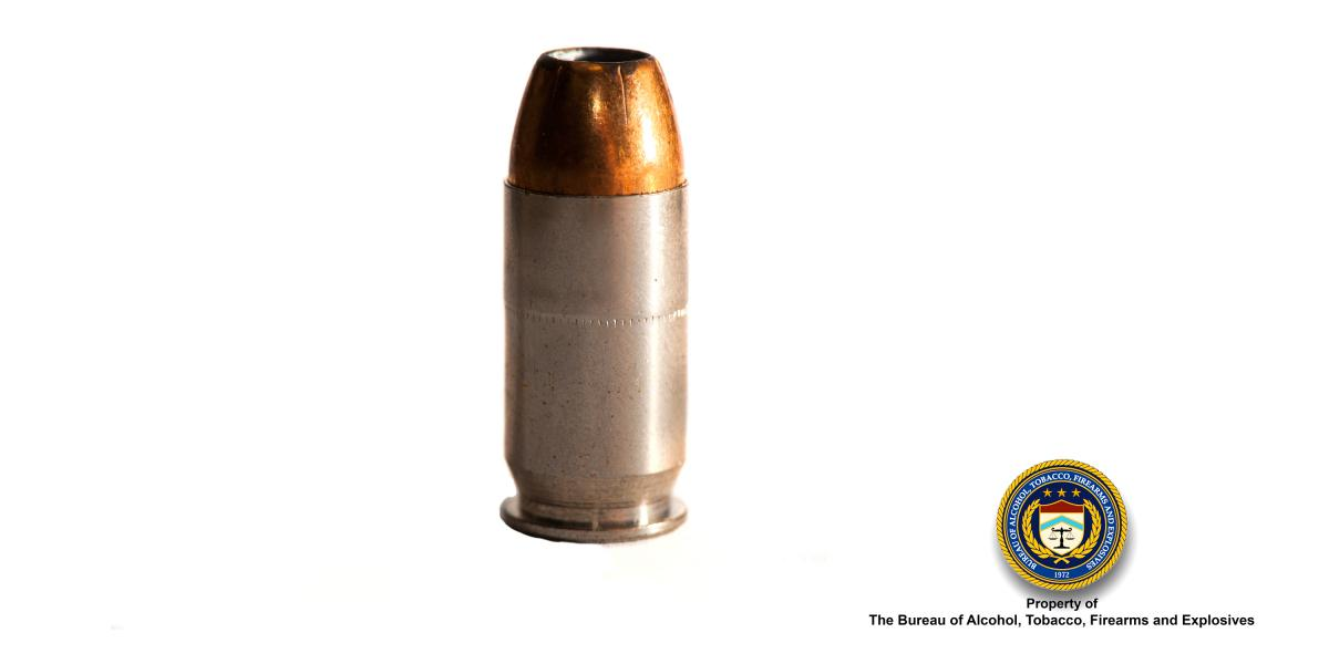Picture of 45 Cal Hollow Point Bullet