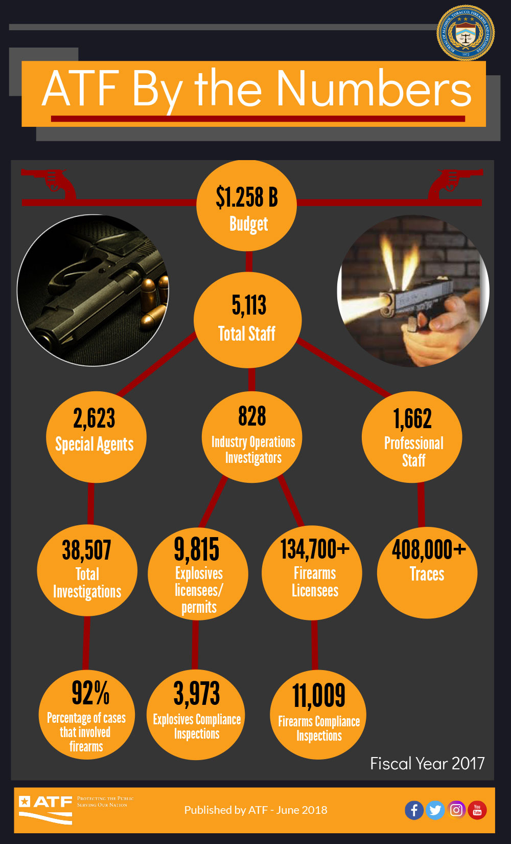 ATF By the Numbers Infographic