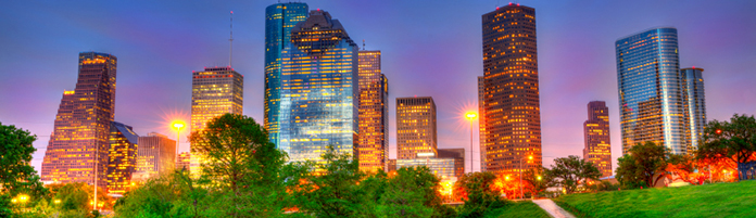 Image of Houston skyline from a park