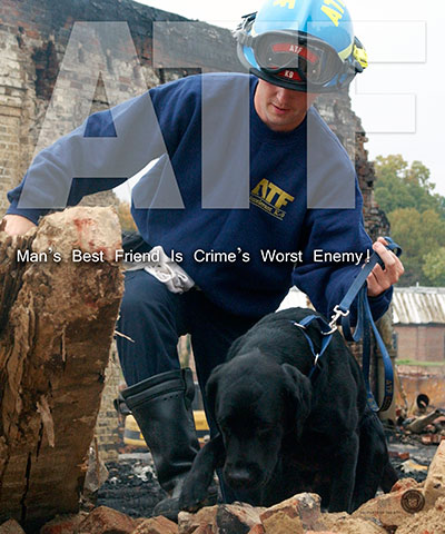 Image of an ATF Team investigating a burned building