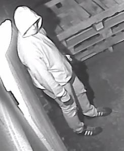 Image of suspect 2 wearing a light hoodie and a light colored face mask.