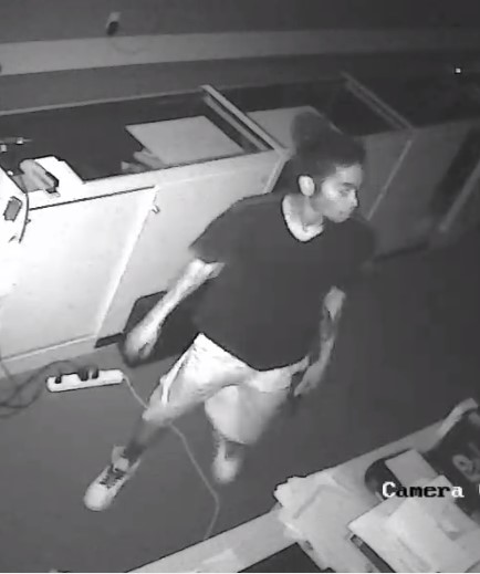 Texian Firearms Burglary