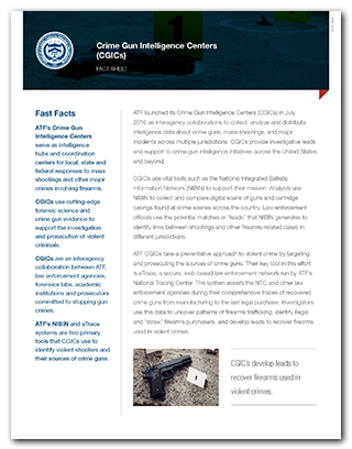 Preview of the CGICs Fact Sheet PDF for print.