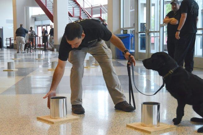 SACH Nic Garlie and K-9 Taylor participate in the ATF National Odor Recognition Test 2019