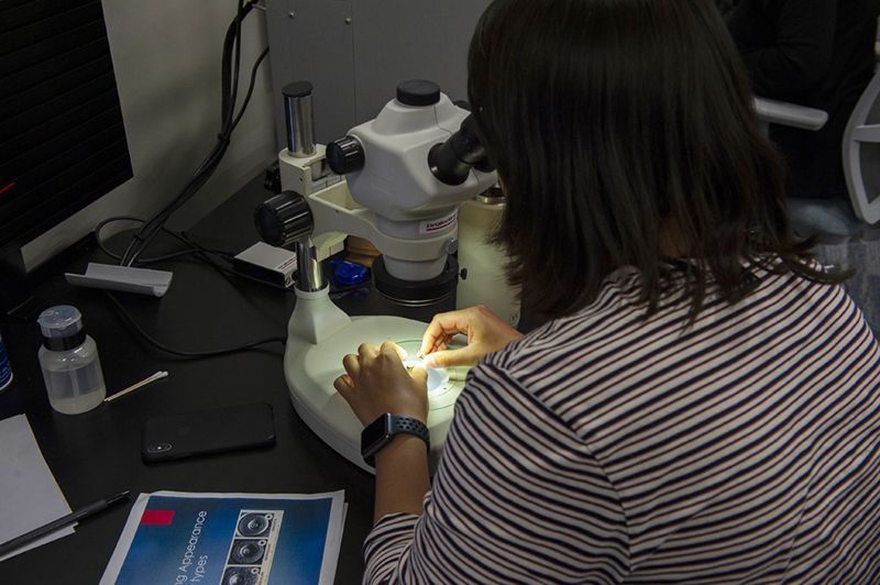 A forensics expert examines a shell casing