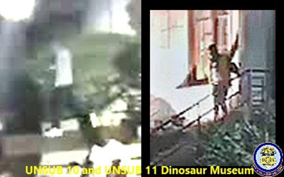 Museum arson suspect