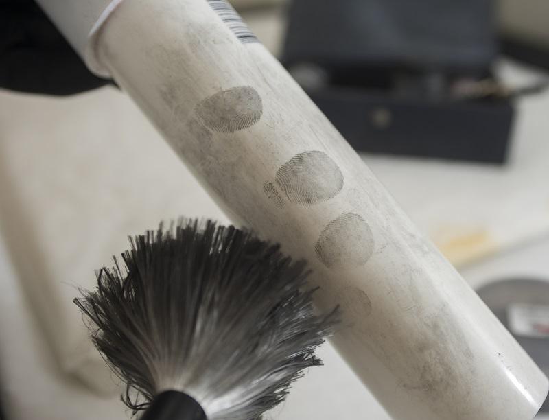 Fingerprint specialist develops prints on an item