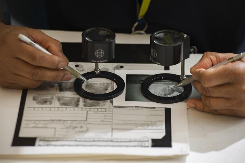 Fingerprint specialist examines fingerprints on a card