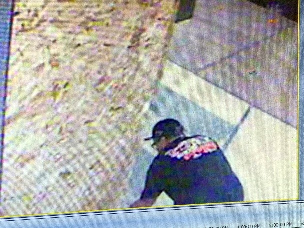 Security footage of the arson suspect.