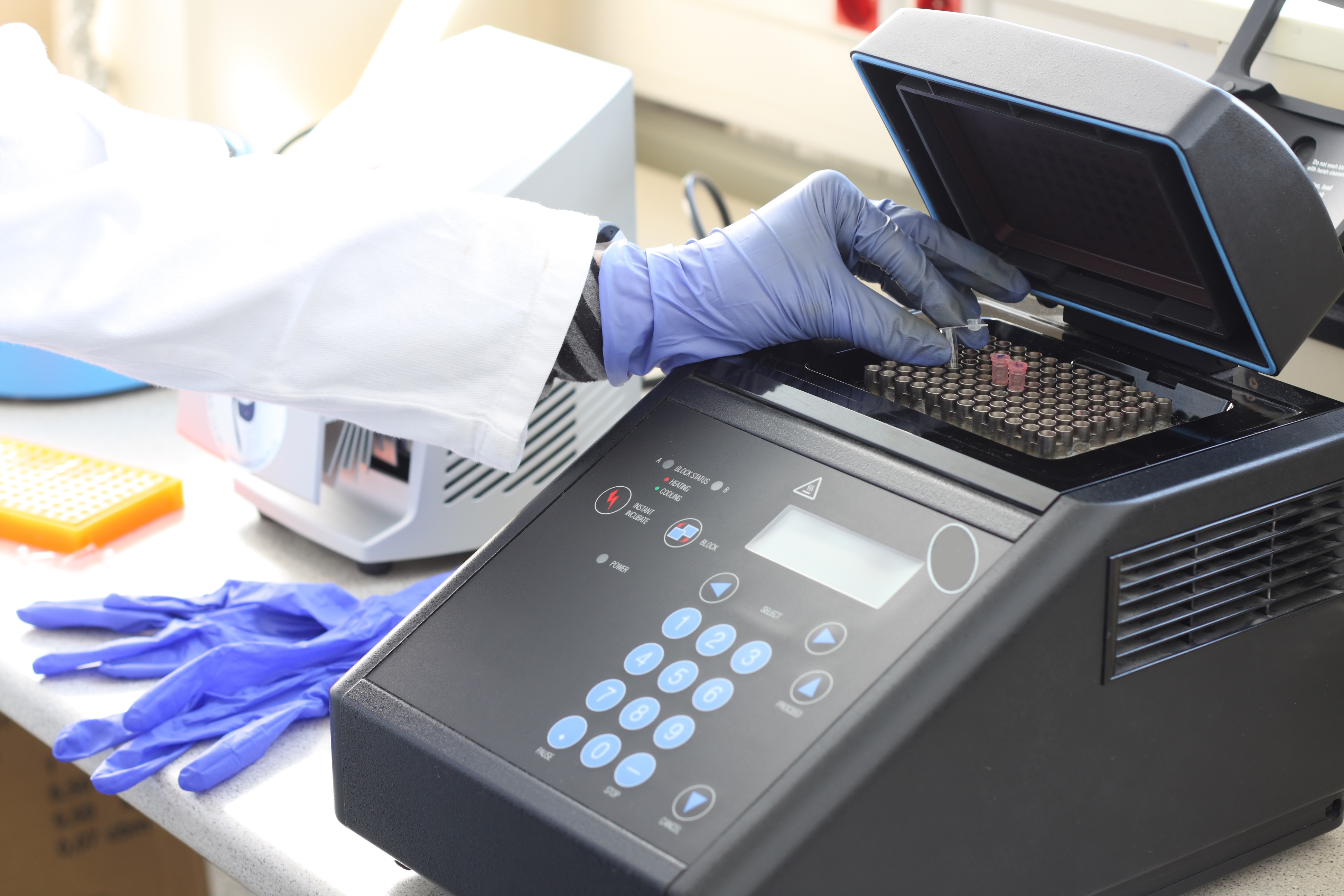 A forensic biologist analyzes evidence in the lab