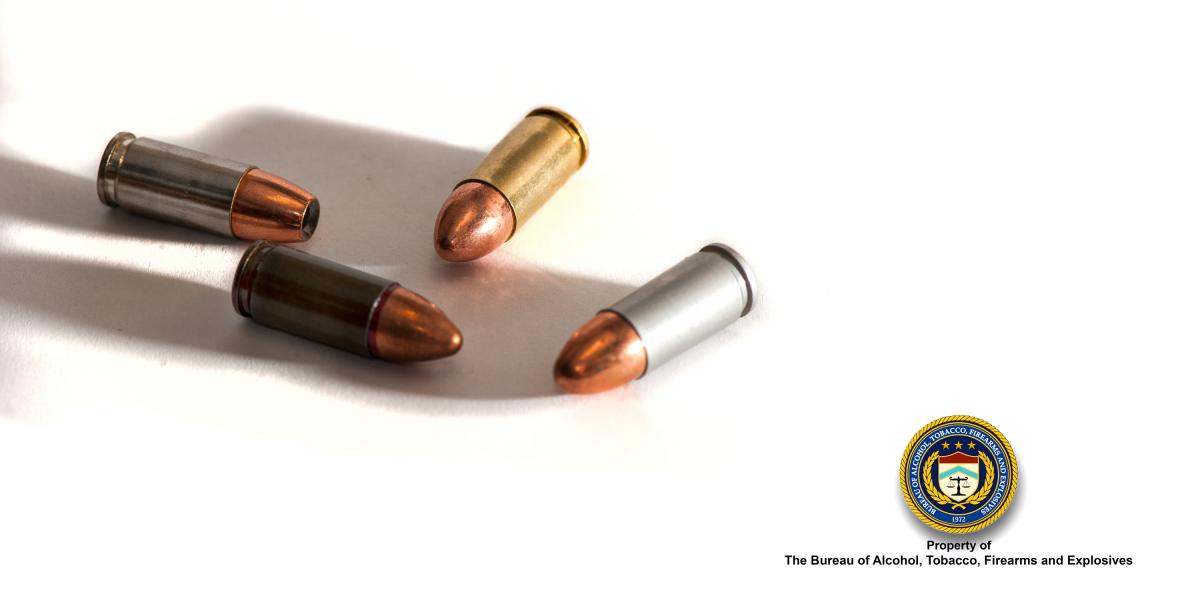 Picture of Random 9 mm Bullets
