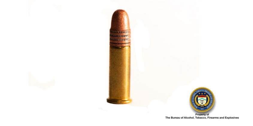 Picture of 22 Cal Bullet