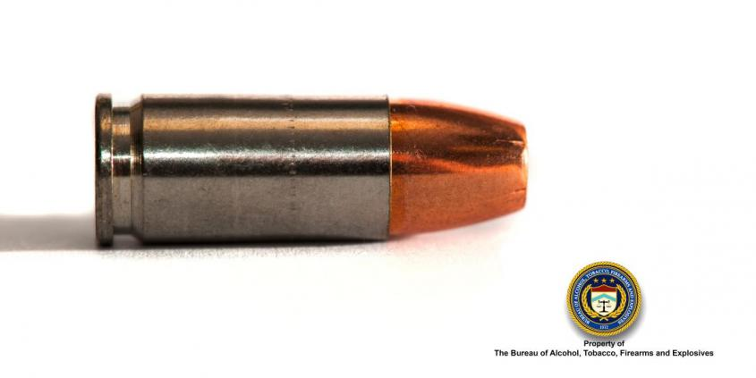Picture of 9 mm hollow point