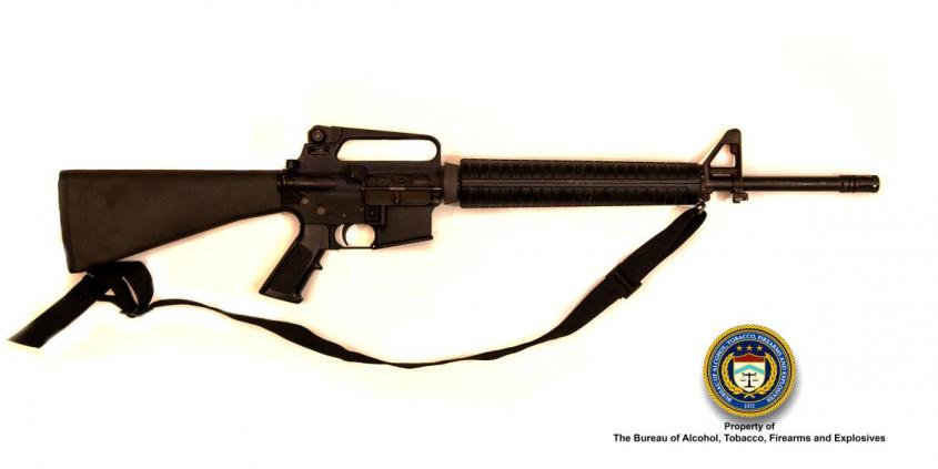 Picture of Bushmaster (AR Type) Make: Stag, Stag 15 Caliber: 5.56mm