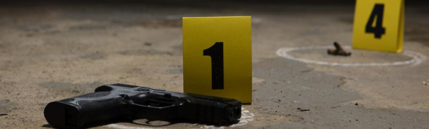 Image of a gun with bullets at a crime scene