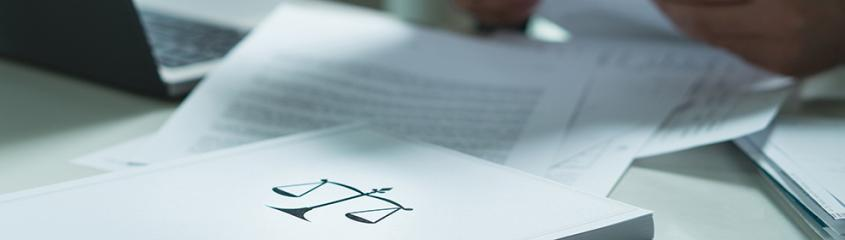 Image of a person holding and reading legal documents.