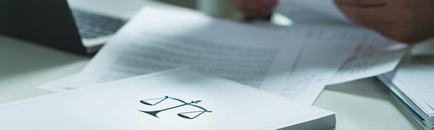Image of a person holding and reading a legal document