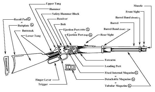 Image of an illustration exhibiting the primary characteristics of a lever action rifle.