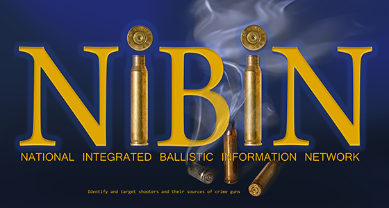 Image of the NIBIN web button